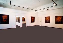 Galleria d'arte di Palazzo Albrizzi